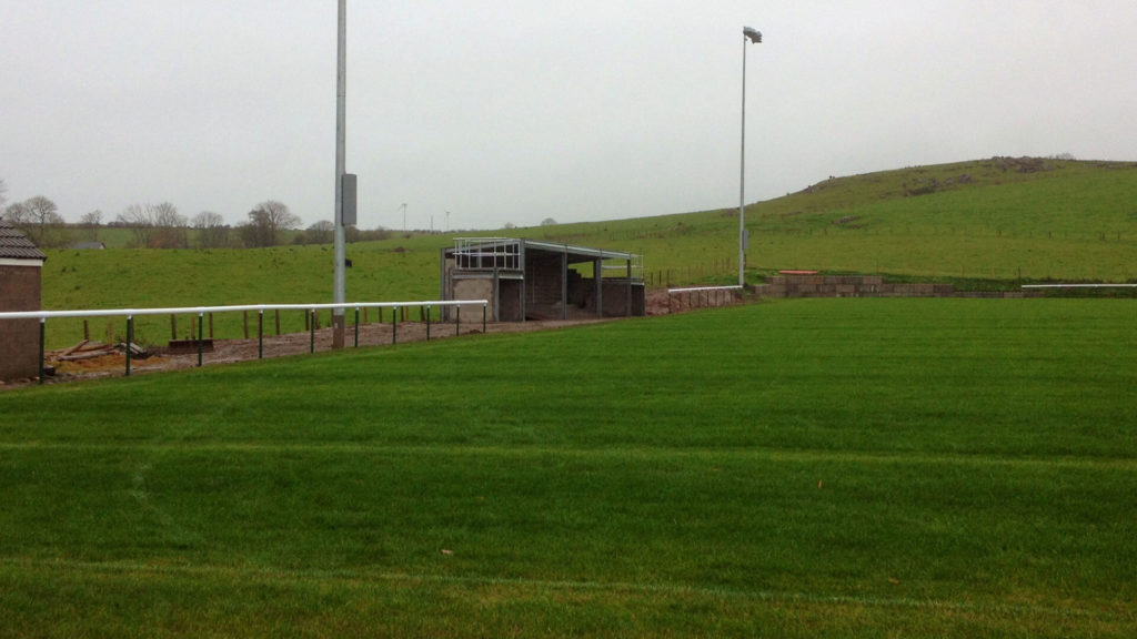 Grass Sports Turf Moorland